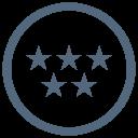 Five Star Service Icon